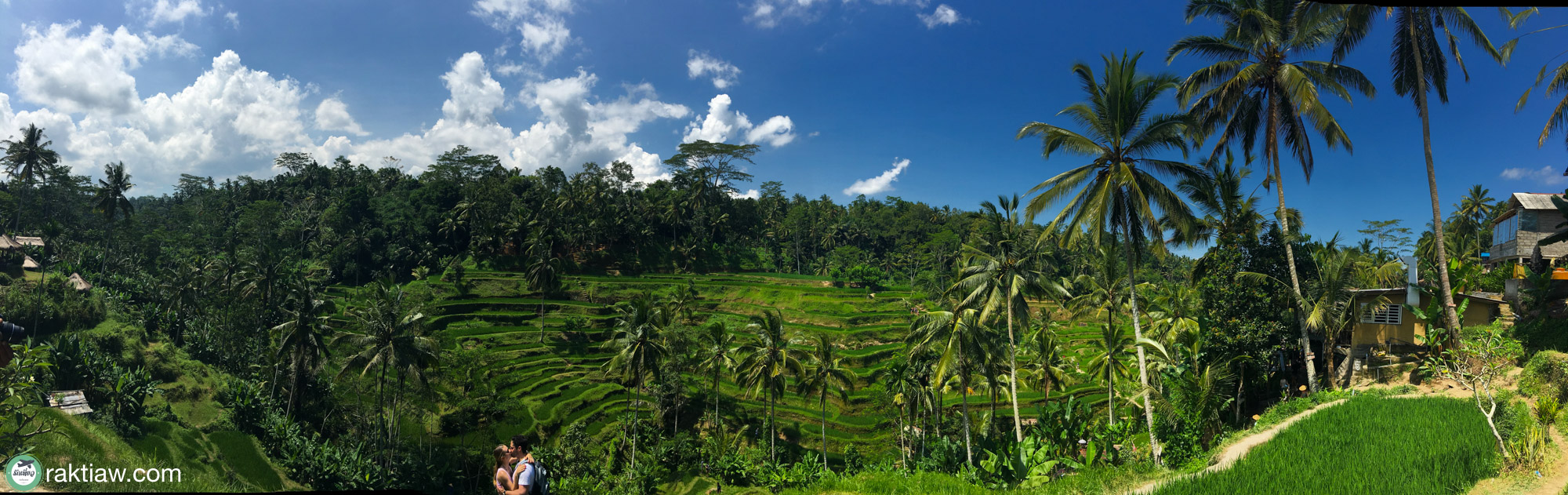 Tegalalang Rice Terrace ที่เที่ยวบาหลี